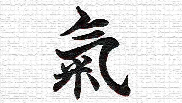 Aikido Seminar: Kayla Feder Sensei (6th dan)