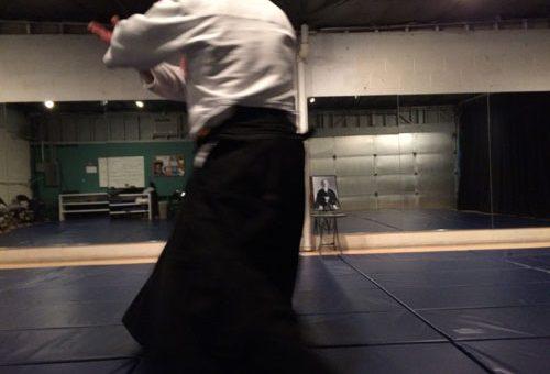 Jiyuwaza: Aiki in Action