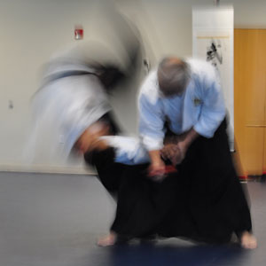 Official Affiliation with Maruyama Institute of Aikido