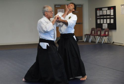 Save the Date – Maruyama Sensei Seminar, Nov. 17-19