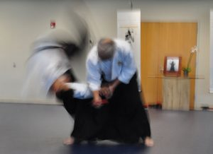 Aikido throw