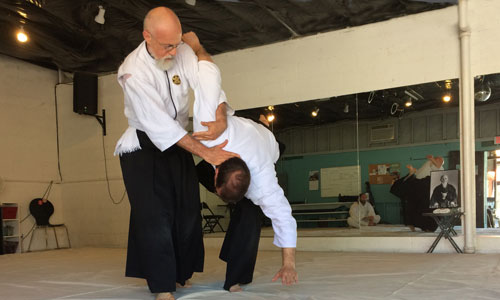 Aikido Instruction